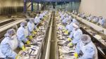 Diamante atenderá a Europa y Asia con productos de consumo humano - Noticias de pesquera diamante
