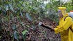 Ministerio de Agricultura invertirá S/. 28.5 millones en plan de acción contra la roya - Noticias de estado de emergencia