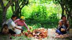 Sierra Exportadora asesoró a productores en la exportación de US$ 60 millones de café y cacao - Noticias de exportacion de cafe