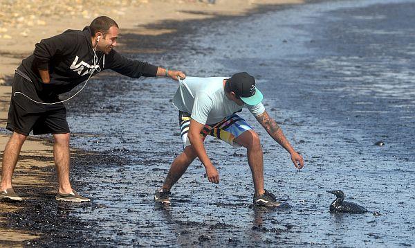Oleoducto ocasiona derrame frente a la costa de California - Noticias de petróleo