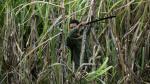 Agraria Chiquitoy tiene más de 3,000 hectáreas para cultivo de caña de azúcar - Noticias de cartavio