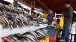 Produce decomisó 100 kilos de perico en Ancón por encontrarse en veda - Noticias de pesca de anchoveta