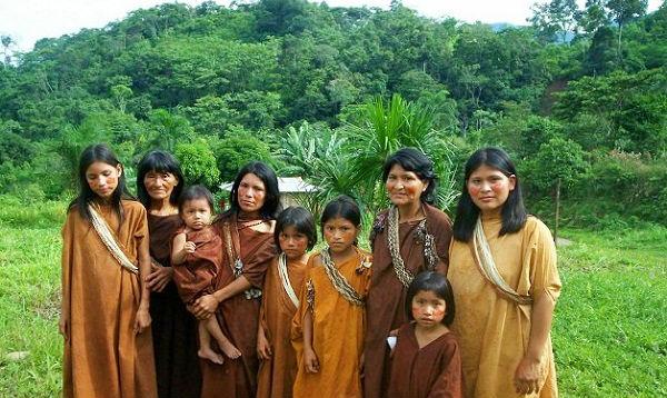 Banco Mundial y WWF donan US$ 5 mills. a comunidades para proteger Amazonía - Noticias de wwf