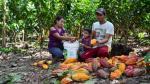 El cambio de cocaína al chocolate, las fuerzas del mercado dan una mano - Noticias de consumidor peruano