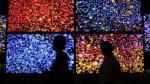 LG Display destina US$ 9,000 millones a fábrica de LED orgánicos - Noticias de bloomberg
