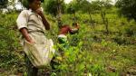 Oro y narcotráfico, combinación que alimenta caos en estado mexicano de Guerrero - Noticias de goldcorp