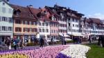 Una región de Suiza pide que paguen los impuestos lo más tarde posible - Noticias de cargas fiscales