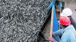 SNI: Existen más de 200 plantas procesadoras de anchoveta en el país - Noticias de sector pesca en el perú