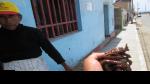 """Produce incauta 25 kilos de """"Caballito de mar"""" en Ancash - Noticias de puerto pizarro"""