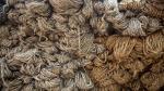 La ruta de la fibra de alpaca peruana a las tiendas de lujo en el mundo - Noticias de fibra de alpaca