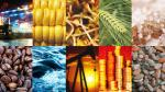 Los 10 indicadores de la economía a tomar en cuenta el 2016 - Noticias de proyecto toromocho