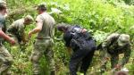 Narcotráfico: Perú erradicó más de 36,000 hectáreas de hoja de coca e incautó 8,316 toneladas de insumos - Noticias de control de insumos químicos