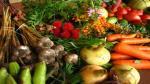 ¿Podremos alimentar al planeta en 2050? - Noticias de sistema alimentario sostenible
