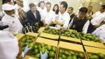 Produce invirtió S/ 6.3 millones en CITE agroindustrial en Huaura - Noticias de innovación tecnológica