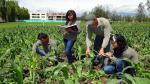 ¿Sabías que los jóvenes peruanos están bien informados sobre biodiversidad? - Noticias de unctad