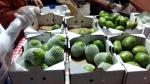 Pequeños productores buscan conquistar Hong Kong y Canadá con una fruta peruana - Noticias de sierra exportadora