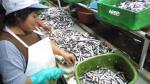 Crecimiento de PBI de julio habría superado el 4%, afirma el Scotiabank - Noticias de pesca de anchoveta