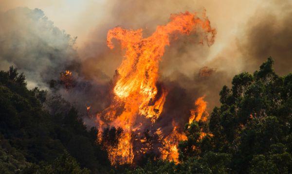 Tornados de fuego en incendio que amenaza a más de 82,000 personas en California - Noticias de estado de emergencia