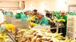Adex: Exportaciones no tradicionales dejan atrás las caídas y crecen 2.7% en agosto - Noticias de juan varilias