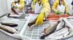 Perú exportó truchas por más de US$ 12 millones hasta agosto, ¿a qué países? - Noticias de brasil
