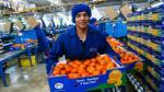 MTPE: Empleo formal de empresas privadas crece 0.6% durante setiembre - Noticias de industria extractiva