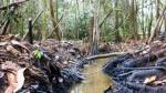 Gobierno declara estado de emergencia en distritos de Loreto afectados por recientes derrames de petróleo - Noticias de estado de emergencia