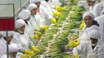 Adex: exportaciones crecen 3.8% entre enero y octubre - Noticias de juan varilias