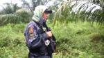 Filipinas busca 110 presos tras la mayor fuga de su historia - Noticias de asaltos y asesinatos