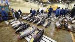 Un atún supera los US$ 600,000 en la primera subasta del año en Tokio - Noticias de tokio